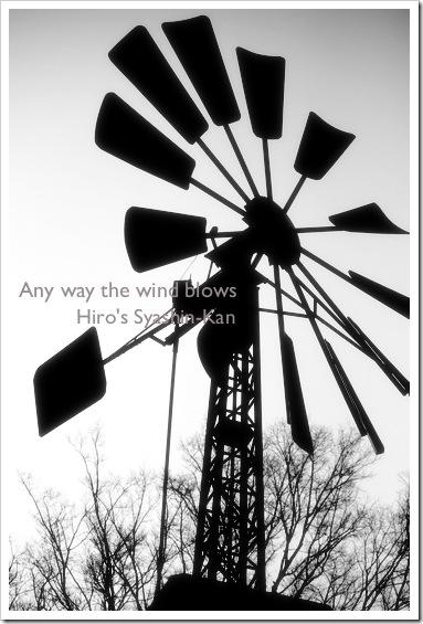 windblows