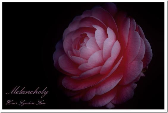 Melancholy1